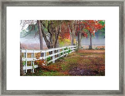Coosaw Horse Fence Framed Print by Scott Hansen