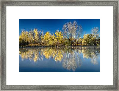 Coot Lake Autumn Reflections Framed Print