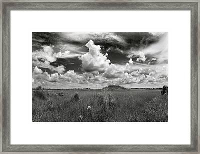 Copeland Prairie Revisited Framed Print