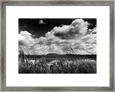 Copeland Prairie Framed Print