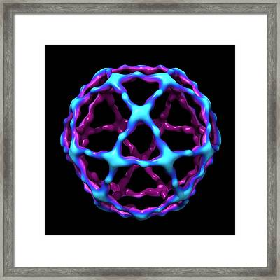 Copii Vesicle Coat Protein Framed Print by Louise Hughes