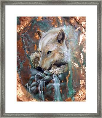 Copper Arctic Wolf Framed Print by Sandi Baker