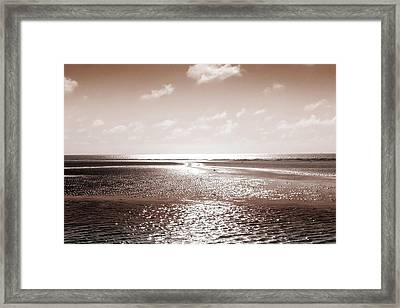 Copper Beach Framed Print