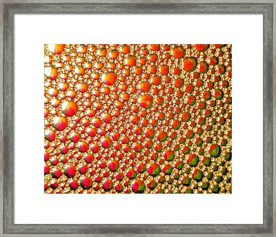 Framed Print featuring the photograph Copper Reflections by Chris Fraser