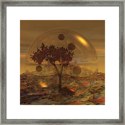 Copper Terrarium Framed Print by Judi Suni Hall