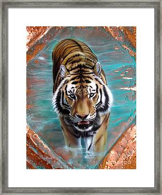 Copper Tiger 3 Framed Print by Sandi Baker