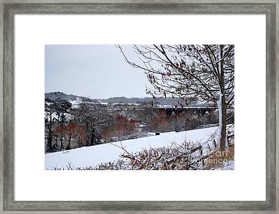 Copper Tones Framed Print