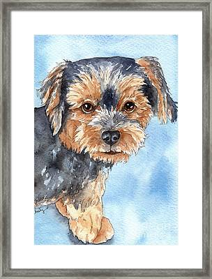 Copper Yorkie Yorkshire Terrier Dog Watercolor Framed Print by Cherilynn Wood