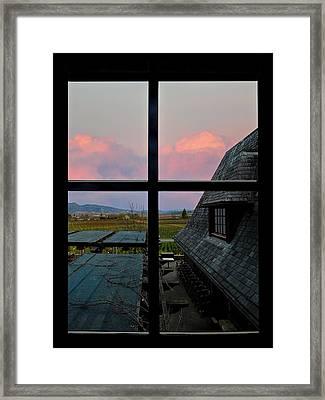 Coppola Vineyards Framed Print by Judy  Johnson
