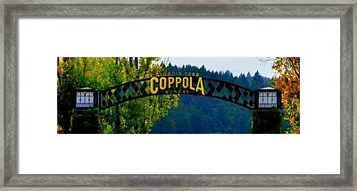 Coppola Winery Two Framed Print