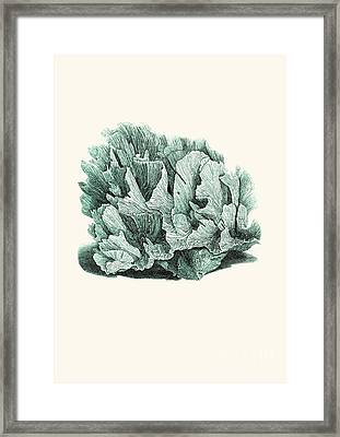 Coral Blue Framed Print