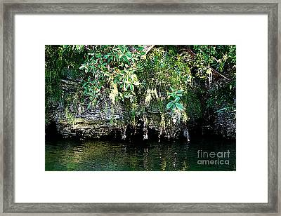 Coral Bluffs Framed Print