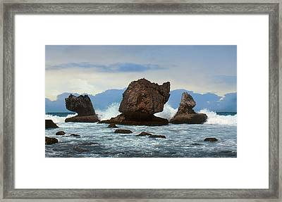 Framed Print featuring the photograph Coral Bones by Ben Kotyuk