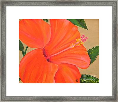 Coral Delight - Hibiscus Flower Framed Print