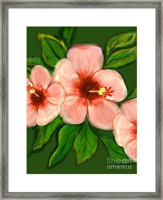 Coral Hibiscus  Framed Print by Christine Fournier