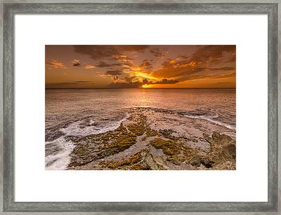 Coral Island Sunset Framed Print