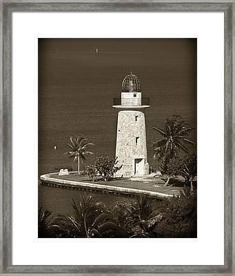 Coral Light Bw Framed Print by Patrick M Lynch