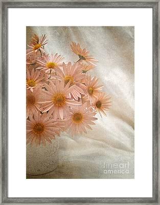 Coral Pink Still Life Framed Print