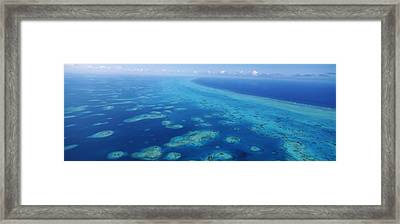 Coral Reef In The Sea, Belize Barrier Framed Print by Panoramic Images