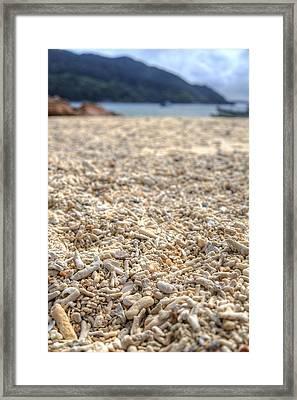 Corals Framed Print by Mario Legaspi