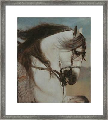 Cordero- Doma Vaquera Framed Print by Sciandra