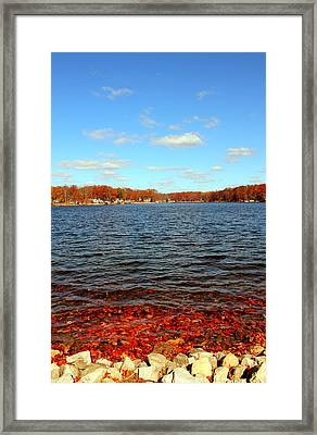 Cordry Lake In The Fall Framed Print by Abril Gonzalez