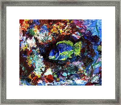 Coral Reef Life In The Ocean Framed Print by Ginette Callaway
