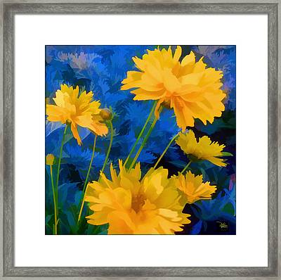 Coreopsis - Yellow And Blue Framed Print