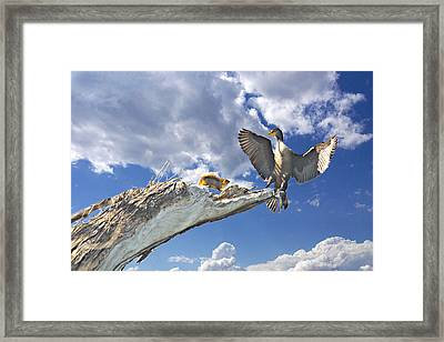 Cormorant Close Encounter With Tree Squirrel 1 Framed Print by Roy Williams