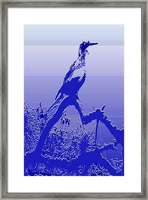Cormorant Dk. Blue Case Framed Print by Rosalie Scanlon