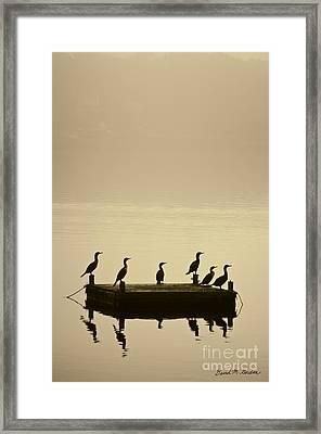 Cormorants And Dock Taunton River No. 2 Framed Print by David Gordon