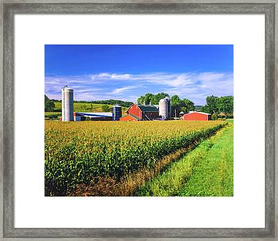 Corn Crop And Iowa Farm At Harvest Time Framed Print by Ron thomas