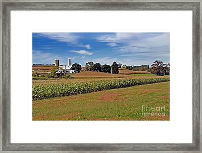 Corn Farmer Framed Print