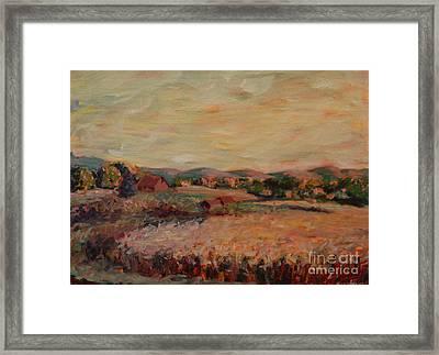 Corn Field Framed Print by Monica Caballero