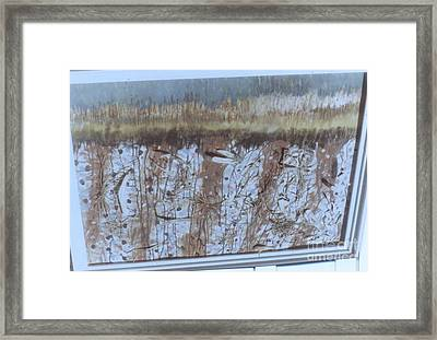 Corn Field Framed Print by Thomas Armstrong