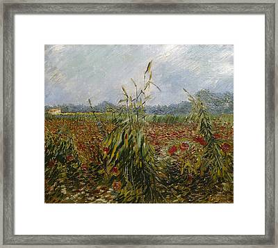 Corn Fields And Poppies, 1888 Framed Print by Vincent van Gogh