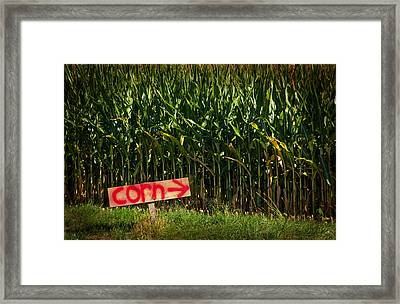 Corn Framed Print by Karol Livote