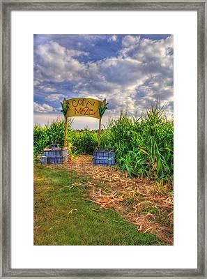 Corn Maze Framed Print by Joann Vitali