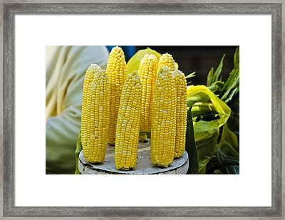 Corn On Display Framed Print