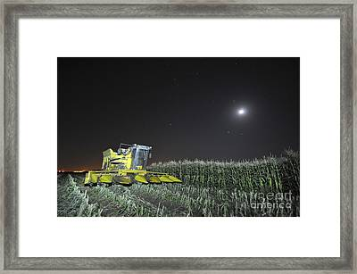 Corn Picker In A Field Framed Print by Shay Levy