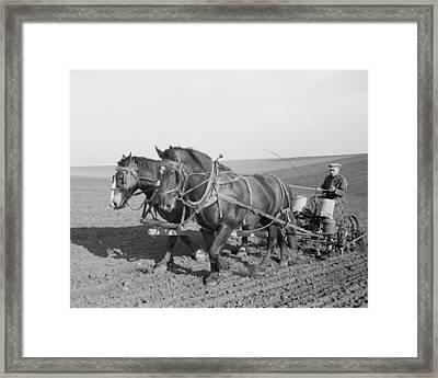 Corn Planting In Jasper County Iowa Framed Print by Historic Photos