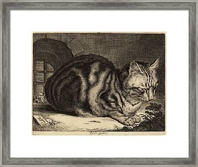 Cornelis Visscher Dutch, 1629 - 1662, The Large Cat Framed Print by Quint Lox