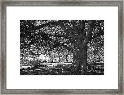 Cornell College Landscape Framed Print by University Icons