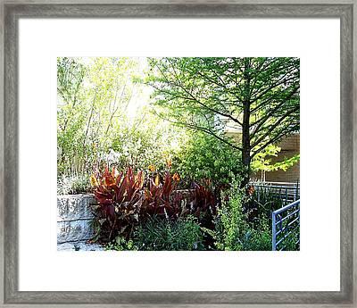 Corner Garden Framed Print