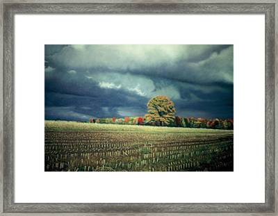 Cornfield On Argentine Road Framed Print by James Welch