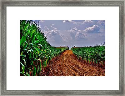 Cornfield Skies Framed Print
