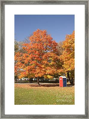 Corning Fall Foliage - 4 Framed Print