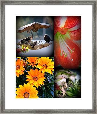 Cornucopia Garden Framed Print