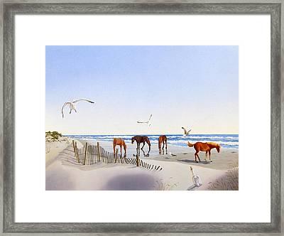 Corolla Beach Framed Print