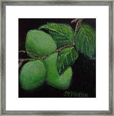 Corona And Lime Framed Print by Annie St Martin